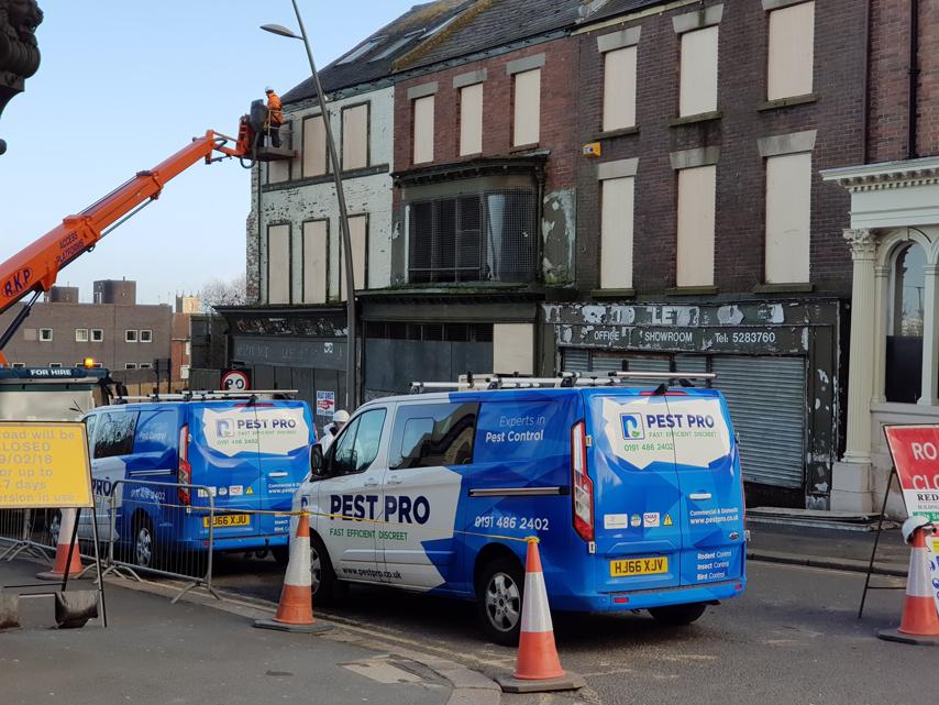 Pest-Pro-Vans-at-Binns-Store.-Sunderland