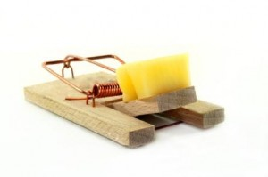 A breakback mouse trap loaded with cheese